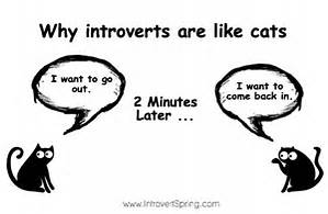 Introverted (I'd love to hang out, but…)